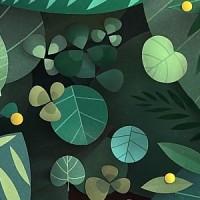 La déforestation vue par Prévert